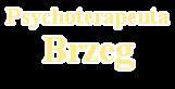 Psychoterapeuta w Brzegu, psychoterapia Brzeg